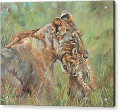 Lioness And Cub Acrylic Print