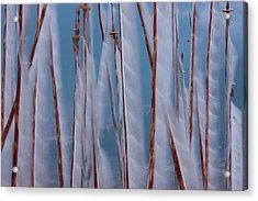 Prayer Flags, Paro Valley, Bhutan Acrylic Print by Mint Images/ Art Wolfe