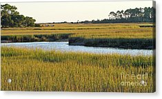 South Carolina Salt Marsh Acrylic Print