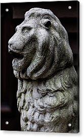 Stone Lion Acrylic Print by Robert Ullmann
