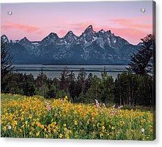 Teton Spring Acrylic Print