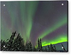 Aurora Borealis, Northern Lights Acrylic Print by Stuart Westmorland