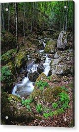 Bela River, Balkan Mountain Acrylic Print