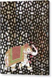 Caparisoned Elephants  Acrylic Print