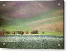 Autumn In South Moravia 3 Acrylic Print