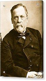 Louis Pasteur Acrylic Print by Paul Nadar