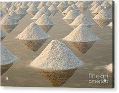 Salt Fields, Phetchaburi, Thailand Acrylic Print