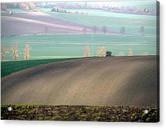 Autumn In South Moravia 5 Acrylic Print