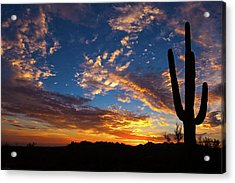 Acrylic Print featuring the photograph A Blanket Of Many Colors by Rick Furmanek