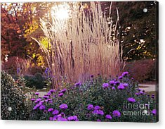 A Flower Bed In The Autumn Park Acrylic Print
