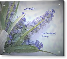 A Gift Of Lavender Acrylic Print