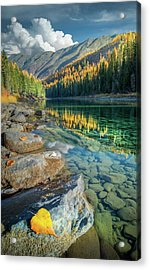 Acrylic Print featuring the photograph A Golden Reflection / Flathead River, Glacier National Park  by Nicholas Parker