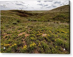 Acrylic Print featuring the photograph A Moment Of Color by Scott Bean