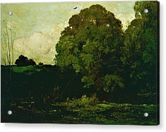 A Pond In The Morvan - Digital Remastered Edition Acrylic Print