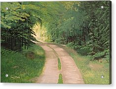 A Road In The Forest Acrylic Print