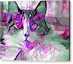 Abstract Calico Cat Purple Glass Acrylic Print