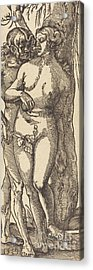 Adam And Eve, 1519 By Grien Acrylic Print