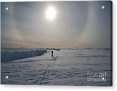 Adventures In Antarctica. Exploring The Acrylic Print