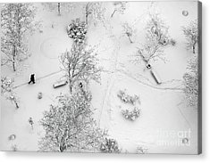 Aerial Top View On A Winter Park With Acrylic Print