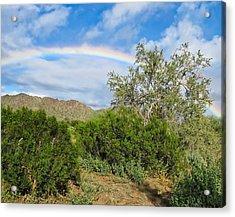 After An Arizona Winter Rain Acrylic Print