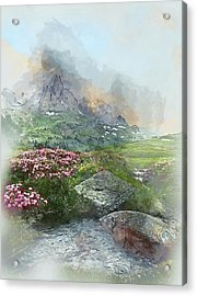 Afternoon Light In The Alps II Acrylic Print