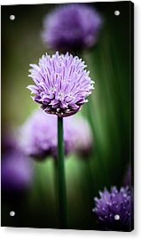 All Alone With My Thoughts Acrylic Print