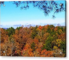 Acrylic Print featuring the photograph All The Colors Of Fall by Rachel Hannah