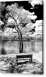Along The River At Washington Crossing In New Jersey Acrylic Print