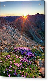 Alpine Sunrise With Flowers In The Acrylic Print