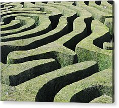 Amazing Maze Acrylic Print by Oversnap