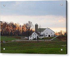 Amish Farm At Dusk  Acrylic Print
