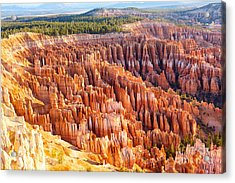 Amphitheater From Inspiration Point At Acrylic Print