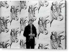 Andy Warhol And Cows Acrylic Print