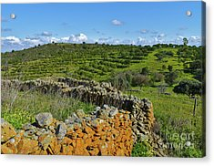 Antique Stone Wall Of An Old Farm Acrylic Print