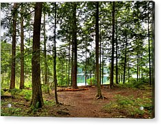 Acrylic Print featuring the photograph Approaching Sis Lake by David Patterson