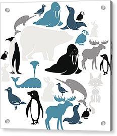 Arctic Animals Icon Set Acrylic Print by Theresatibbetts