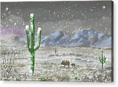 Arizona Blizzard Acrylic Print