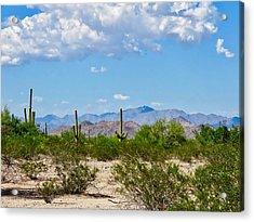 Arizona Desert Hidden Valley Acrylic Print
