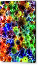 Art From Above Acrylic Print