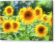 Art Of The Sunflower Turner Acrylic Print