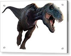 Artwork Of A Tyrannosaurus Rex Running Acrylic Print by Mark Garlick