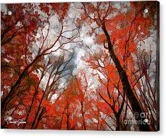 Aspiration Acrylic Print