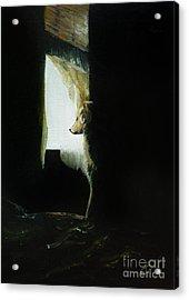 At The Window Acrylic Print