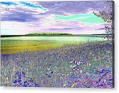 Au Train Island Greened Over Acrylic Print