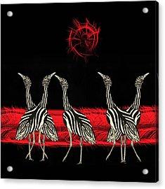 Zebra Australian Bustards Red Sun Acrylic Print
