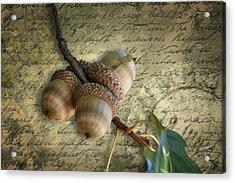 Acrylic Print featuring the mixed media Autumn Acorns On Vintage Postcard Digital Art by Debi Dalio