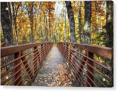 Autumn At Frog Bay  Acrylic Print