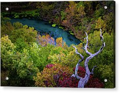 Autumn At Ha Ha Tonka State Park Acrylic Print