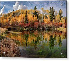 Autumn At Its Best Acrylic Print by Leland D Howard
