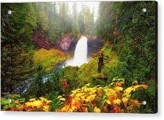 Autumn At Sahalie Falls Acrylic Print